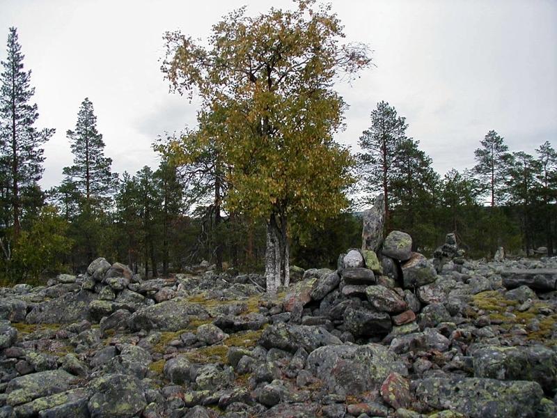 svarttjarn-lidberget3