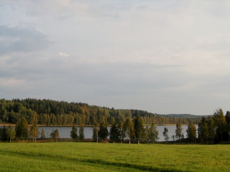 svarttjarn-vy