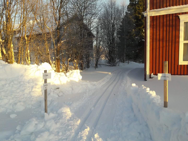 Bild på skidspår